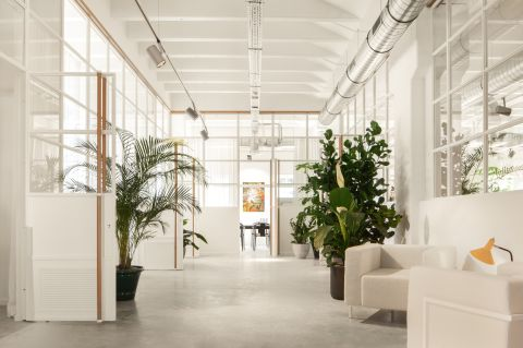 Coworking center Brussels - Fosbury and Sons Alfons