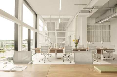 Workspaces at Fosbury and Sons Alfons - Coworking Brussels